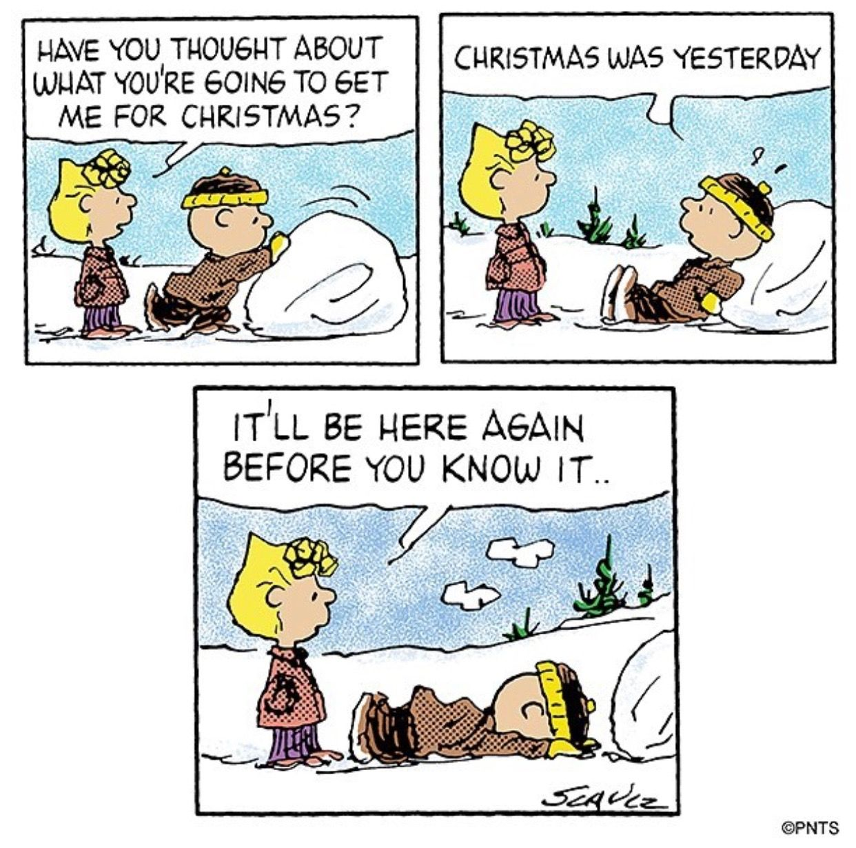 Pin by Wendi Schuster Cozzi on Snoopy | Pinterest