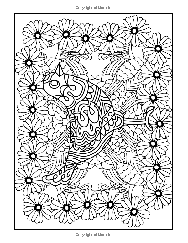 Amazon Com Coloring Books For Grownups Feather Feastival Mandalas