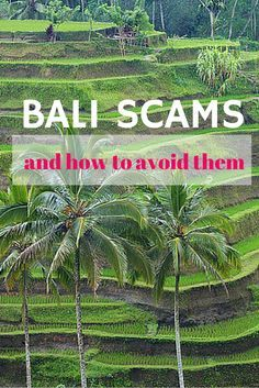 Bali scams and how to avoid them.