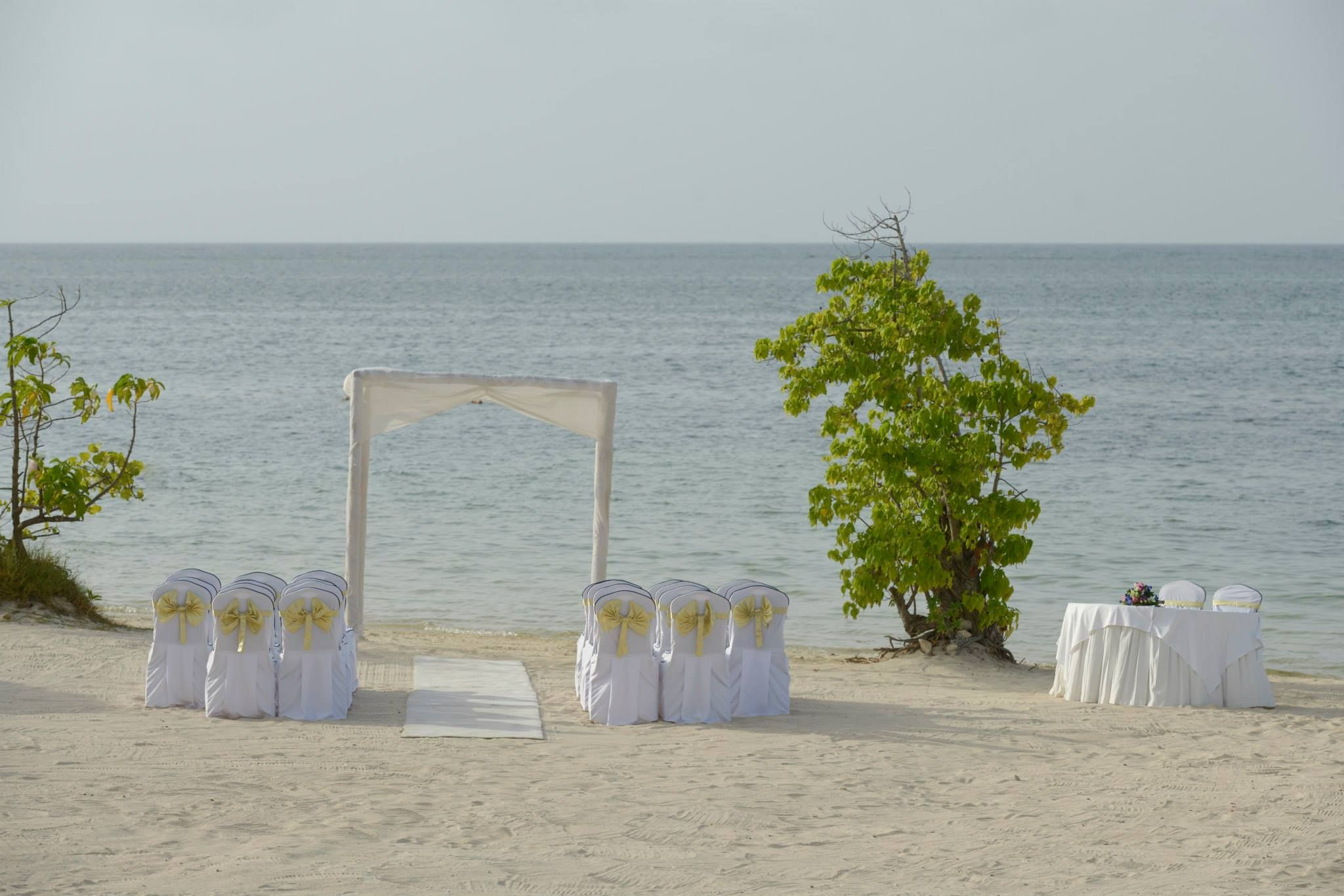 Check out this beautiful ceremony setup at Iberostar Rose Hall Beach ...
