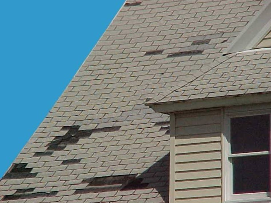 Shingle Roof Storm Damage In 2020 Roof Damage Roof Repair Roof Shingles