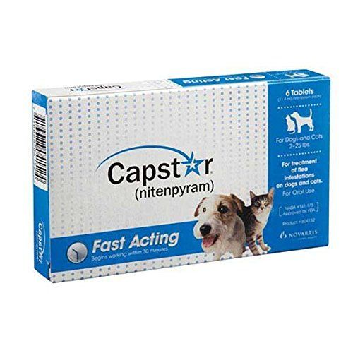Capstar Flea Treatment Dog Blue 2 25 Lbs 6 Tablets Http Www Amazon Com Dp B005z6ul1m Ref Cm Sw R Pi Awdm Spqyub0dbmqsp Flea Treatment Fleas Dogs
