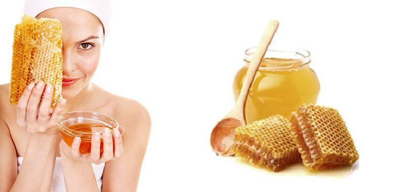صمغ النحل هو ما يسمى العكبر او البروبوليس او غراء النحل وهو مادة صمغية وشمعية يجلبها النحل من لحاء وبراعم الأزهار والنباتات والأشجار ويضيف إلي Condiments Food