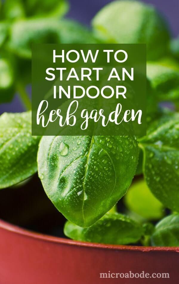 How To Start An Indoor Herb Garden Herbs Indoors 400 x 300