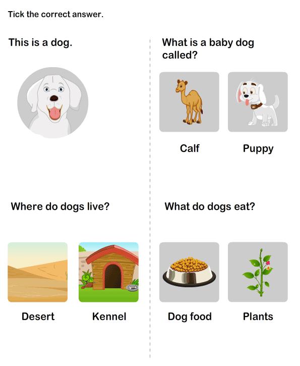 Farm Animal Worksheet 13 - science Worksheets - kindergarten ...