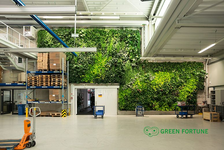 Gr newand pflanzenwand vertikalbegr nung green fortune picard gr nne fingrer pinterest - Pflanzenwand bauen ...