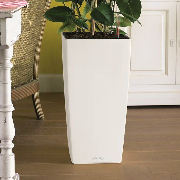 Lechuza Planters Combine Function With Design   The Self Watering System  Lets You Enjoy Beautiful Plants Effortlessly, And The Attractive Shapes Of  The ...