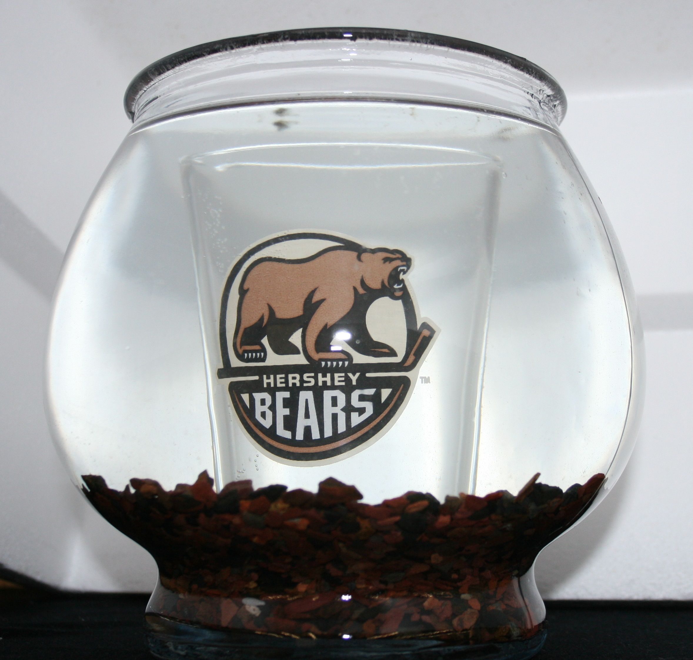 Aquarium Decoration Ideas & DIY Fish Bowls