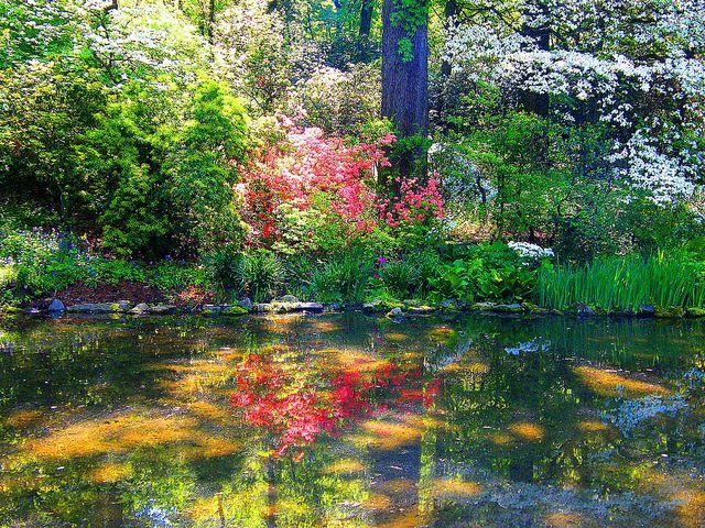 Bronx Botanical Garden Spring 400 x 300