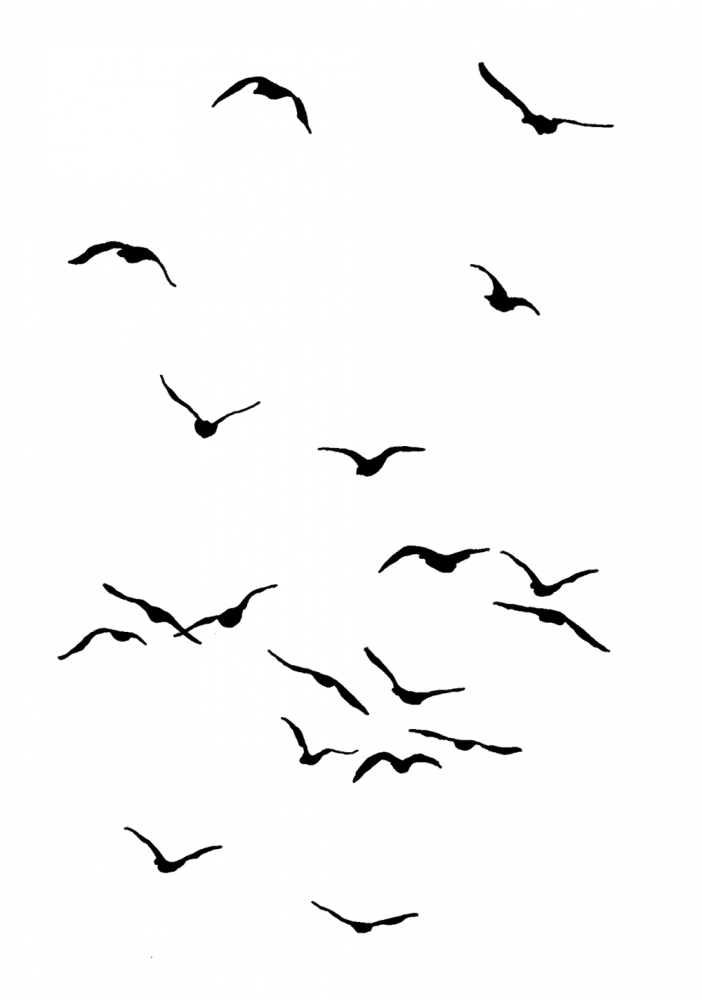 Birds 2 Flying Bird Silhouette Birds Painting Flying Bird Drawing