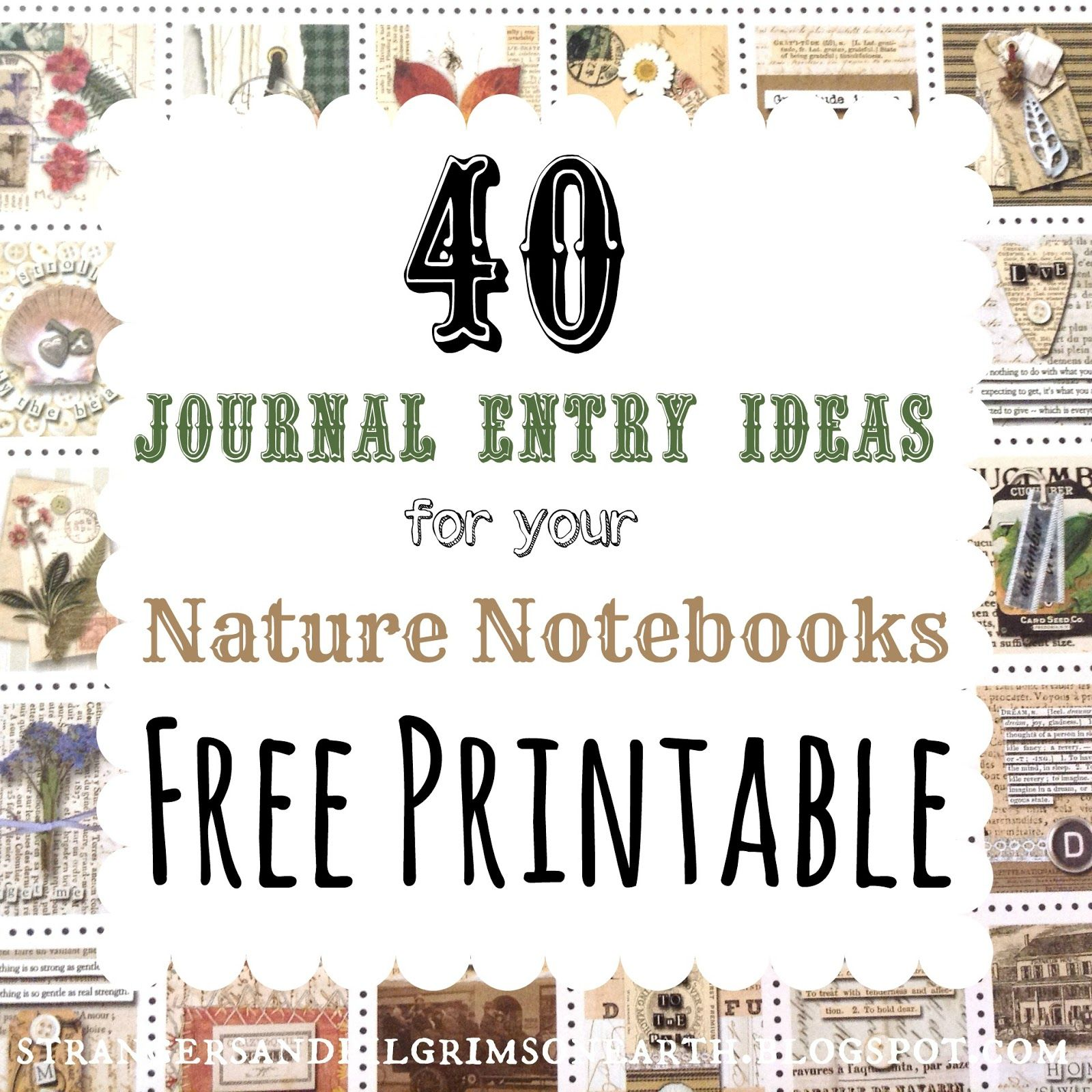 40 Journal Entry Ideas For Nature Study Notebooks Free