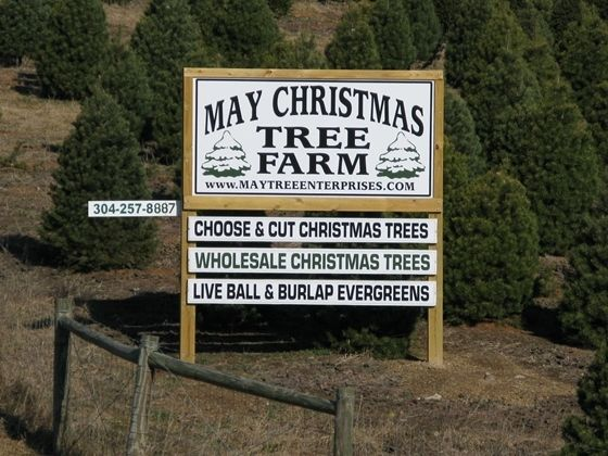 West Virginia Land Lots Ranches And Farms For Sale Christmas Tree Farm Live Christmas Trees Tree Farms