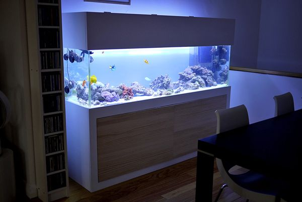 20 Modern Aquariums For Cool Interior Styles | Aquarilibrium ... on home backgrounds, home books, home saltwater aquariums, home entertainment centers, home pets, home food stands, home arcade stands, home cleaners,