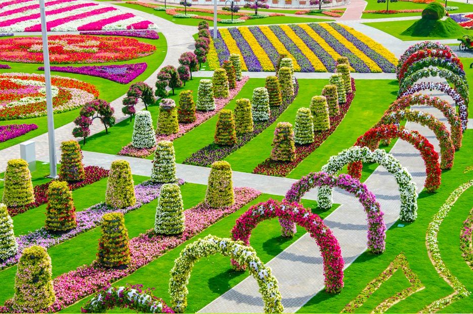 Marvelous Dubai Miracle Garden 15 Beauty of the world