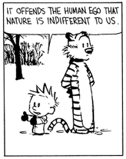 Calvin and Hobbes: It offends the human ego that nature is indifferent to us.