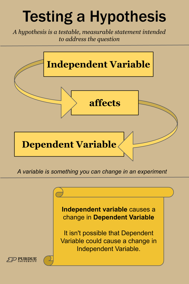 Testing A Hypothesis Determining Dependent And Independent Variables Data Science Learning Learning Science Research Skills