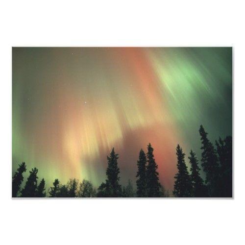 USA, Fairbanks area, Central Alaska