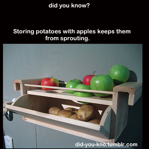 store potatoes and apples together so potatoes won't sprout