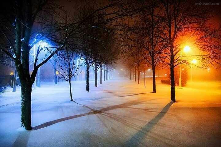 Two sides of winter