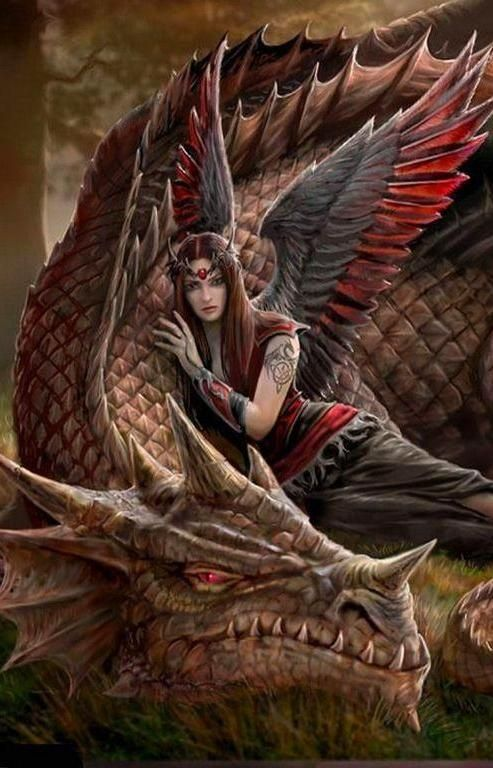 Fantasy Dragon And Fairy Wallpaper IPhone