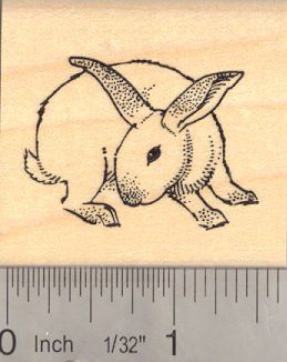 House Rabbit Rubber Stamp Binkying Bunny * Continue to the product at the image link.