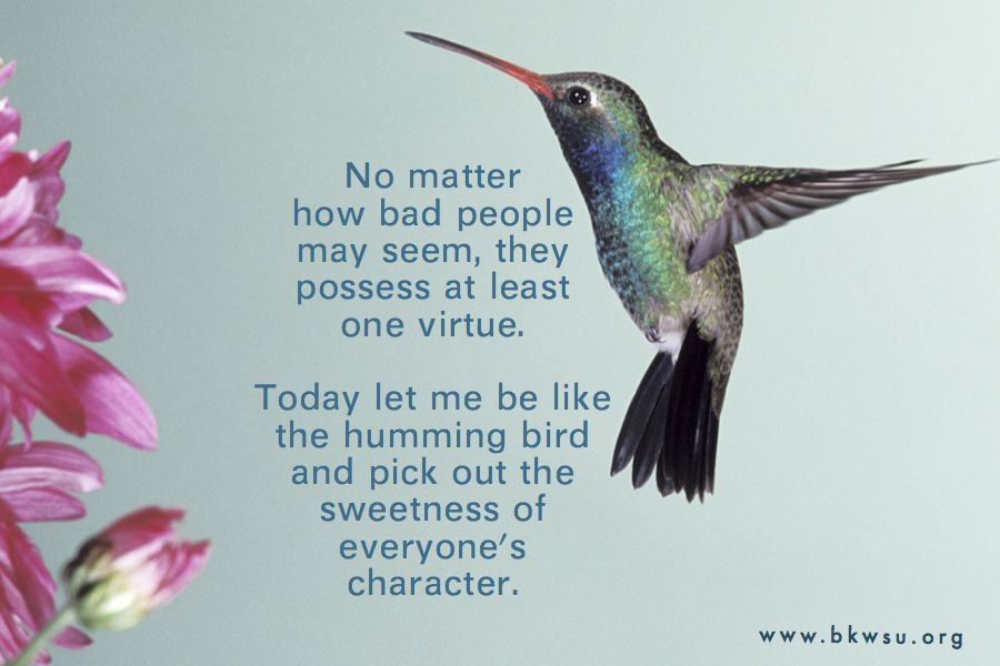 Hummingbird is one of my fav images. Old quotes