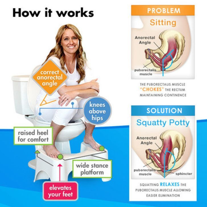 The squatty potty works like a stool around your toilet and allows for you to obtain the perfect for How do sharks use the bathroom