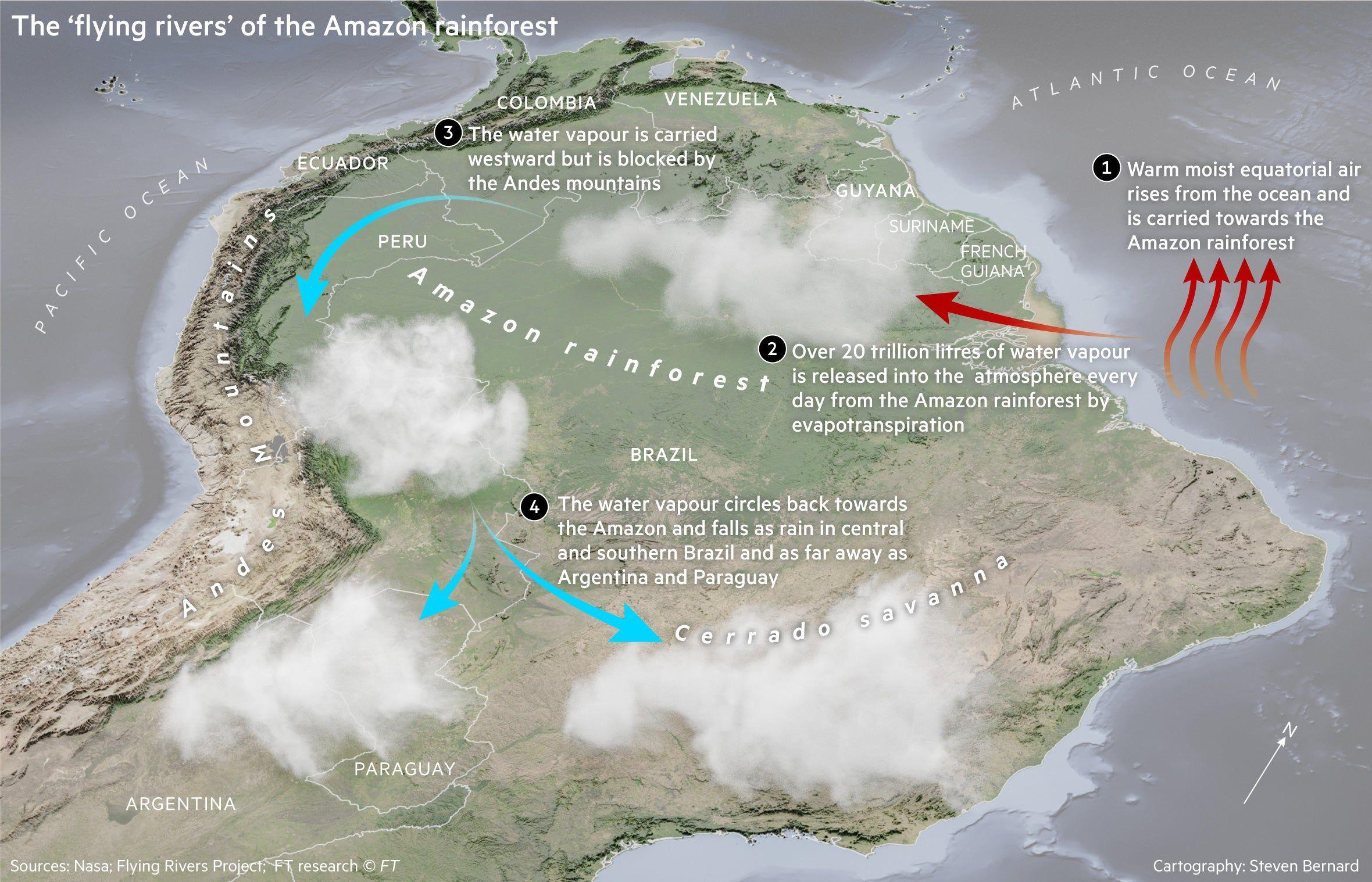 Oc How The Amazon Rainforest Creates It S Own Rain Amazon