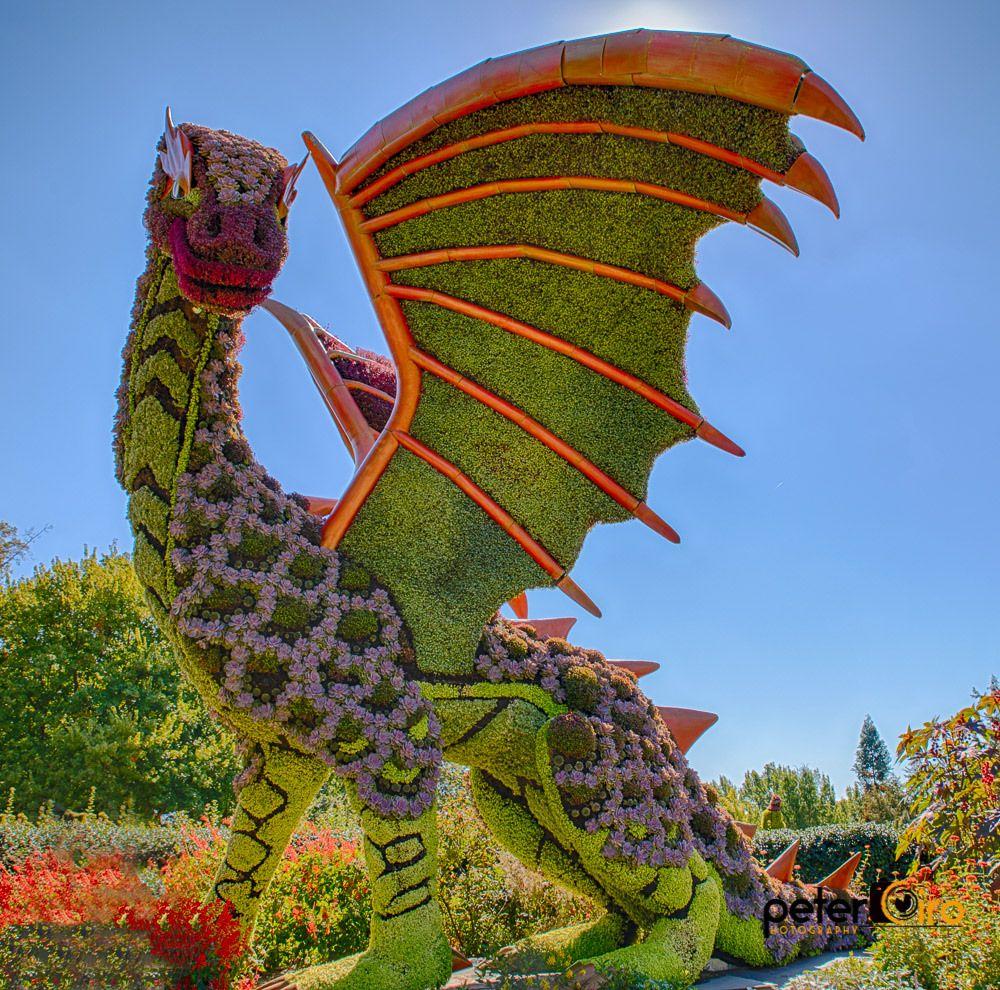 Dragon Made Of Flowers Atlanta Botanical Garden Atlanta