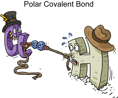 Polar Covalent Bonds A Bond Between Two Non Metals Where The