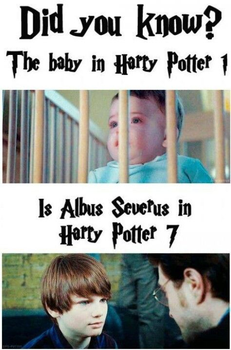 Wow Awesome Harry Potter Baby Harry Potter Jokes Harry Potter Facts
