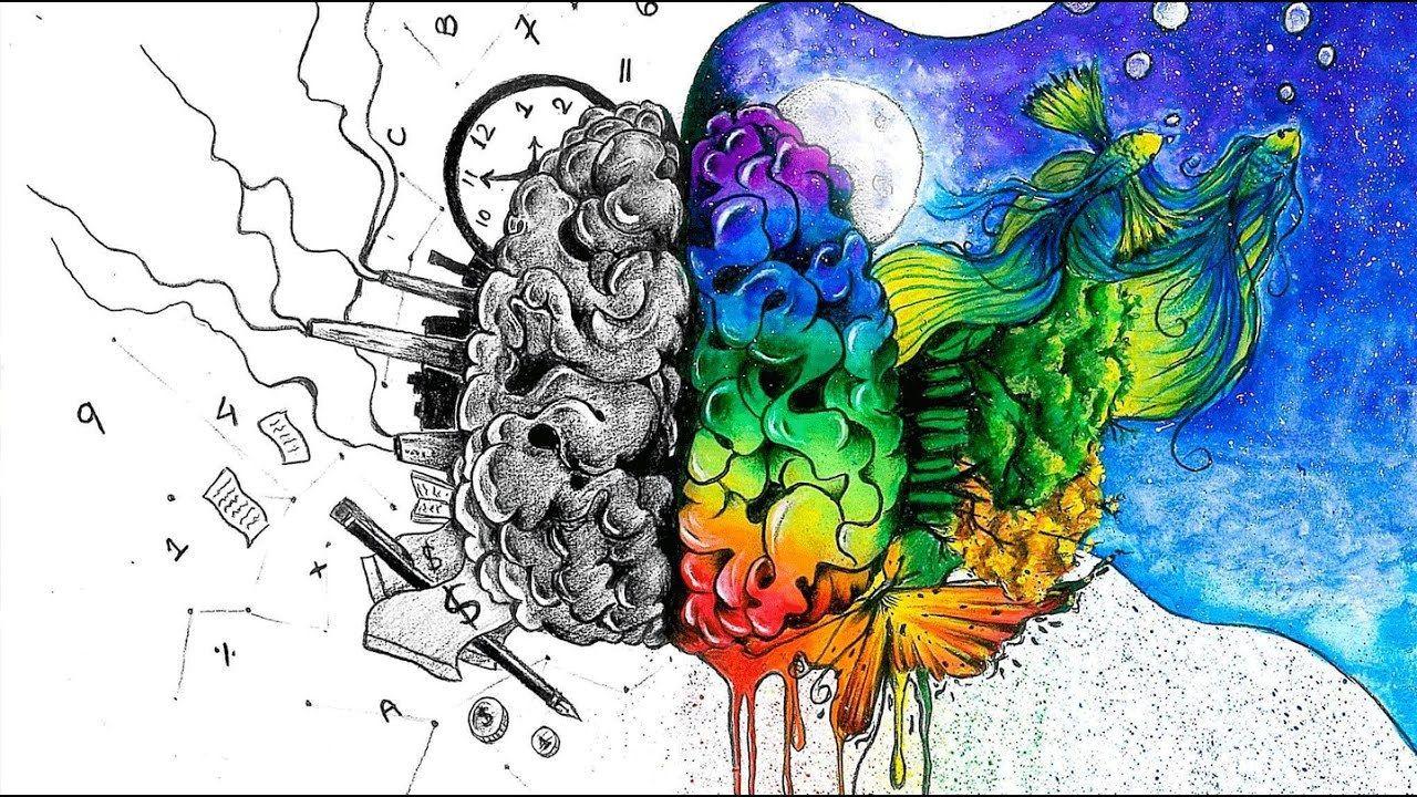 Noocube Vs Brainpill 2017 Best Smart Drugs Nootropic Supplements