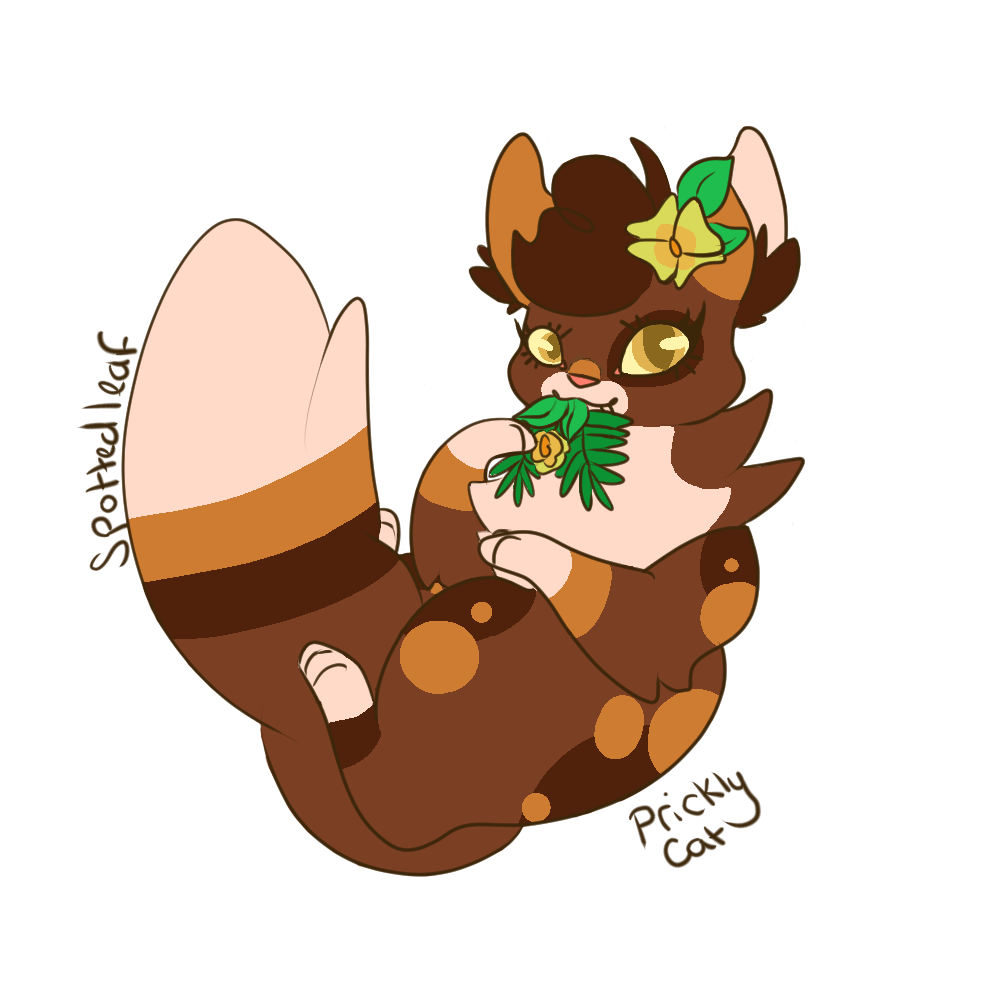 Spottedleaf With Images Warrior Cats Fan Art Warrior Cats Art