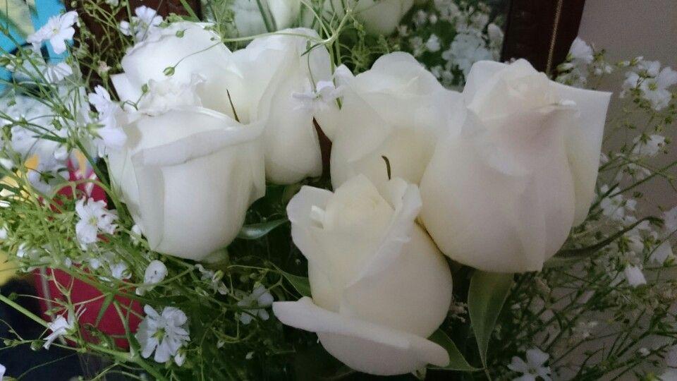 #TheReinventionProject: Flores para mi mamá. Por su infinito cariño, apoyo y grandeza humana !