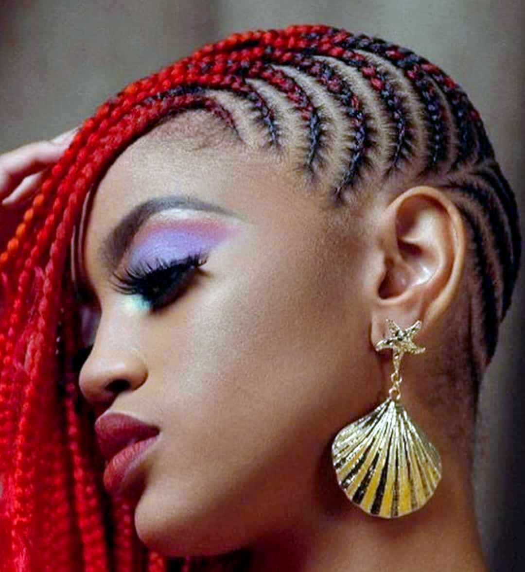 Amazing Hairstyles For African American Women African Braids Hairstyles Braided Hairstyles Natural Hair Styles