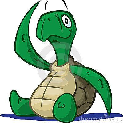 Baby turtle | Schildpad