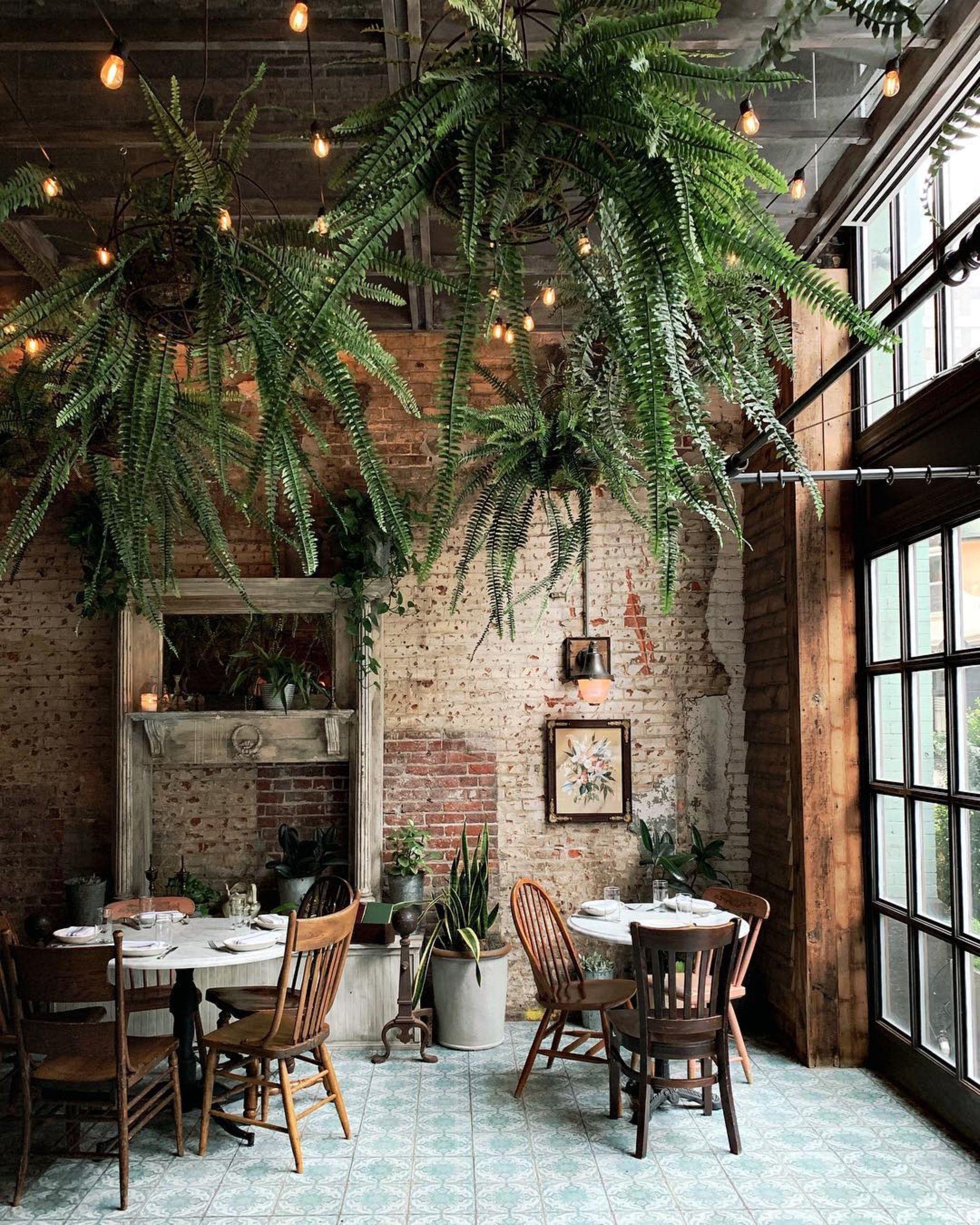 O V E R G R O W N This Week We Re Loving On Any Places And Spaces That Use Perfect Diseno De Interiores Cafeteria Diseno Del Restaurante Diseno De Cafeteria