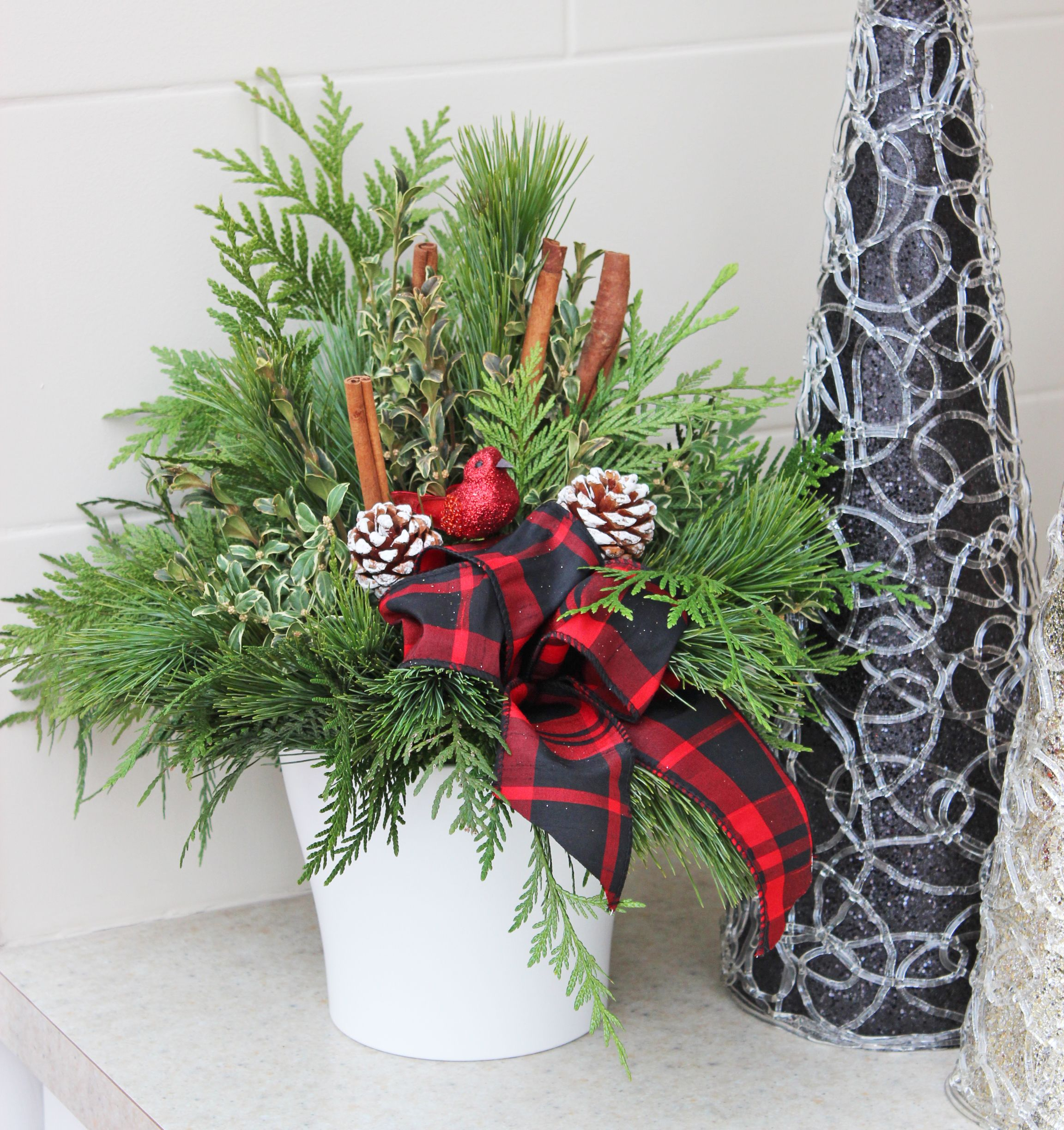 Indoor evergreen arrangement for the Christmas season. | Poinsettia ...