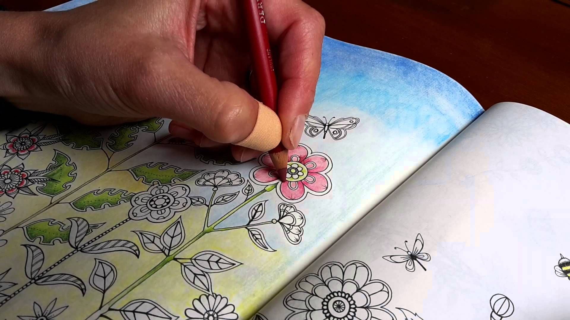 Find This Pin And More On Coloring With Pastel Pencils By Connievdbos
