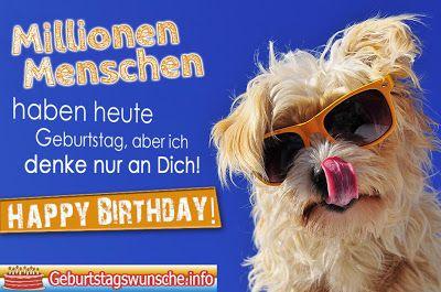 Geburtstagsgruss Mit Hund Geburtstagsspruche Fur Hundebesitzer