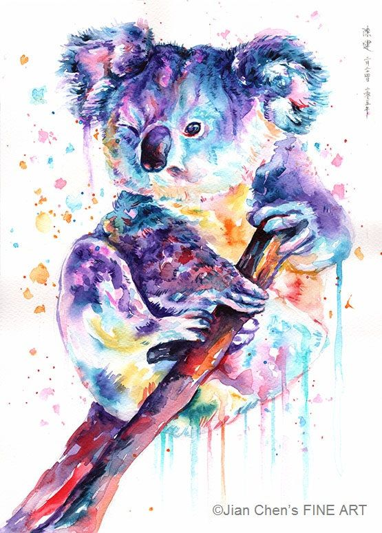 Small Mounted Print Koala By Jianchensfineart On Etsy