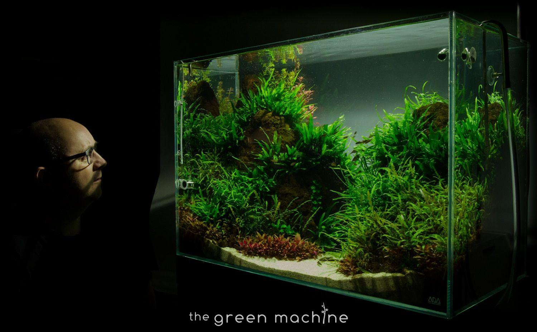 Altitude Aquascape By James Findley The Green Machine Aquascape