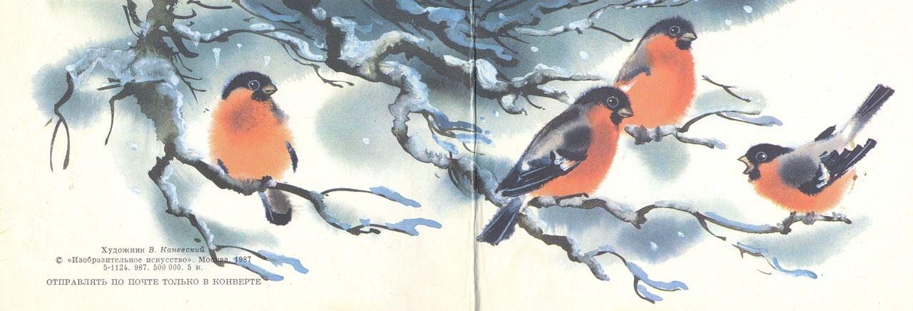 День, старые открытки снегири