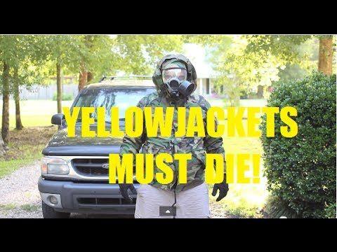 Underground Yellow Jacket nest - find and destroy!