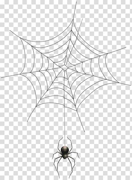 Black Spider And Spider Web Spider Web Halloween Spider Web Spider Transparent Background Png Clipar Spider Drawing Spider Web Drawing Halloween Spider Web