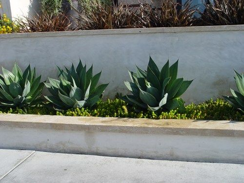Concrete retaining walls landscaping network wall for Stucco garden wall designs