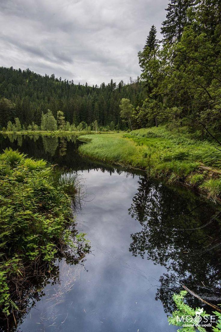 bei baiersbronn Schwarzwald, Urlaub berge, Nordschwarzwald