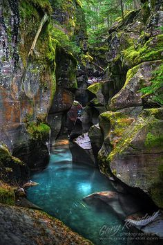 Gorge in Glacier National Park, Montana, United States of America.