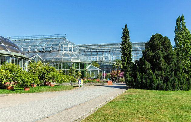 The Berlin Dahlem Botanical Garden And Museum
