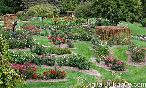 DUBUQUE ARBORETUM AND BOTANICAL GARDEN at Marshall Park Largest All ...